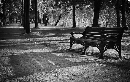lonely park bench