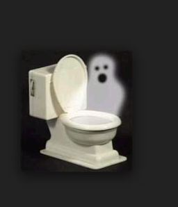 ghost in toilet