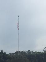 limp-flag